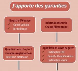 Apport de garanties